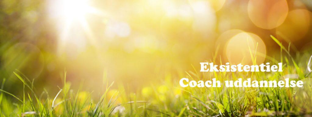 Coachuddannelse i København